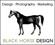 Black Horse Design (South Wales Horse)
