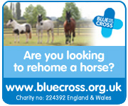 Blue Cross Burford (South Wales Horse)