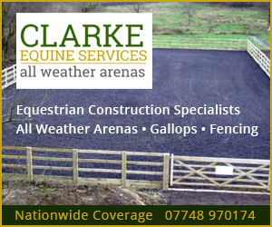 Clarke Equine Services 2019 (South Wales Horse)