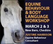 Justine Harrison Workshop March 2019 (South Wales Horse)