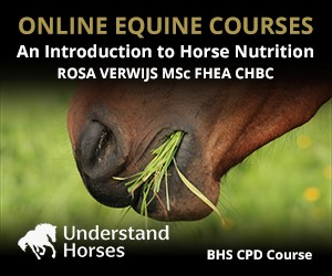UH - An Introduction To Horse Nutrition (South Wales Horse)