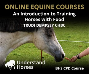 UH - An Introduction To Training Horses With Food (South Wales Horse)