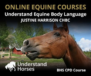 UH - Understand Equine Body Language (South Wales Horse)